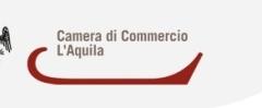 CCIIAA_logo_aq